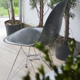 Krzesełko i roślinność