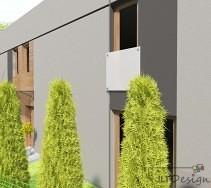 Wysokie, zielone tuje na tle szarej elewacji domu.
