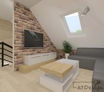 projekty-i-aranzacja-wnetrz-salony-275